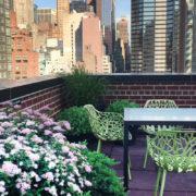 rooftop-urban