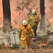 10-must-770-australian bushfires-PETER PARKS AFP via Getty Images.jpg