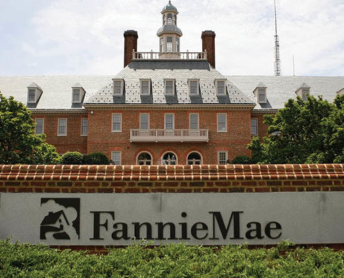 fannie-may