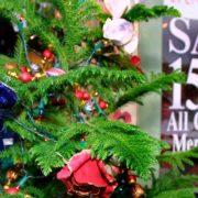 holiday-season-shopping